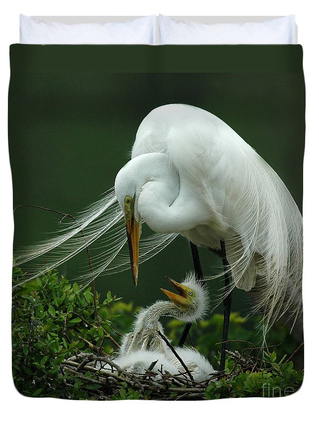 Great White Egret Duvet Cover featuring the photograph Mom And Me by Vivian Christopher