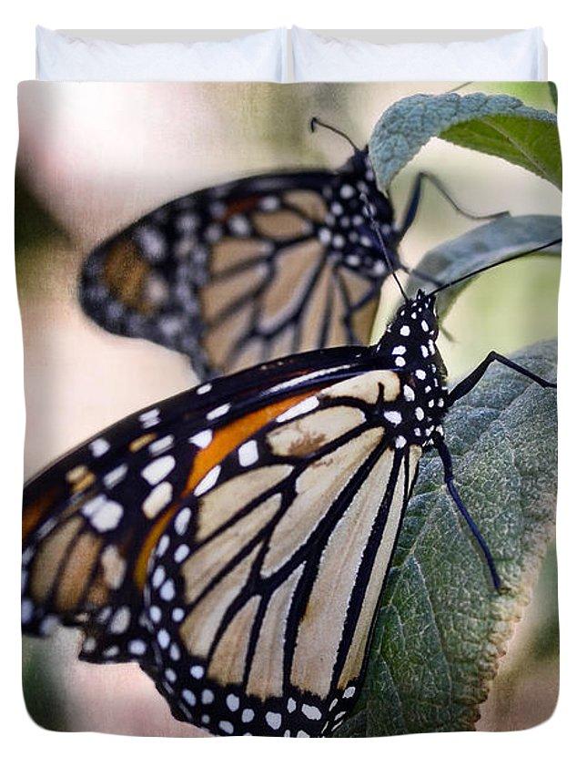 Monarch Butterflies Duvet Cover featuring the photograph Monarch Butterflies by Saija Lehtonen