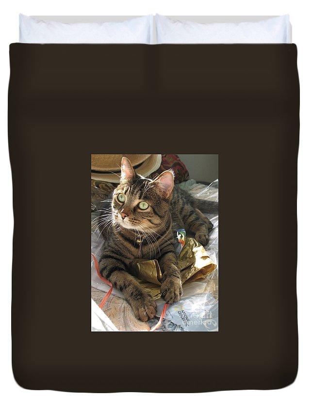 Cat Duvet Cover featuring the painting Monty by Jolanta Anna Karolska
