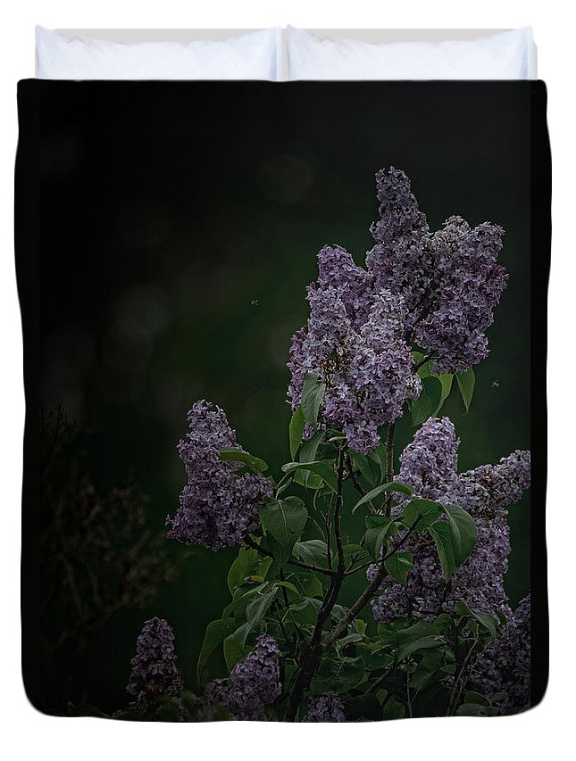 Lilacs Duvet Cover featuring the photograph Mood Lilac by Susan Capuano