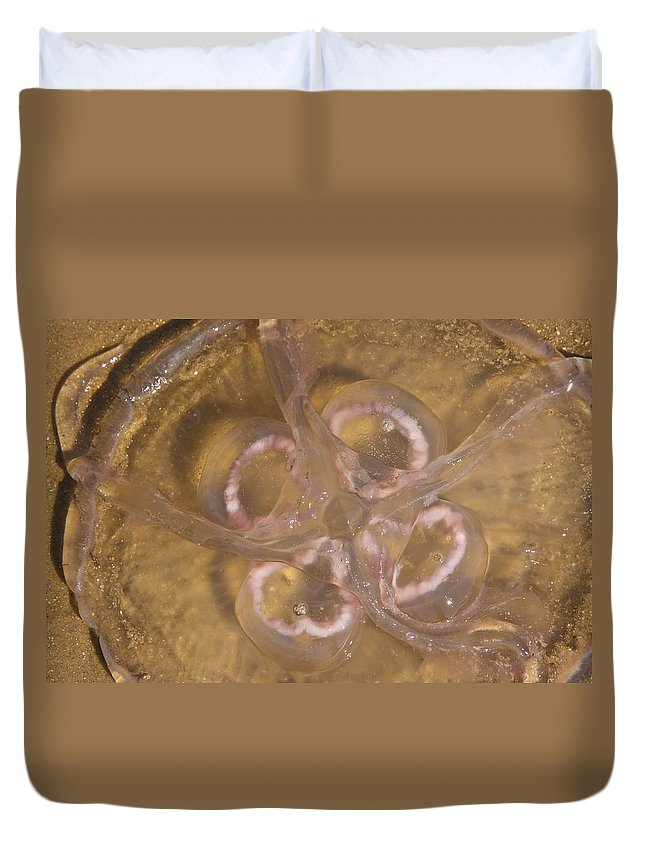 Moon Duvet Cover featuring the photograph Moon Jelly by Betsy Knapp