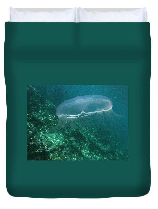 Duvet Cover featuring the photograph Moon Jelly Fringe by Kimberly Mohlenhoff