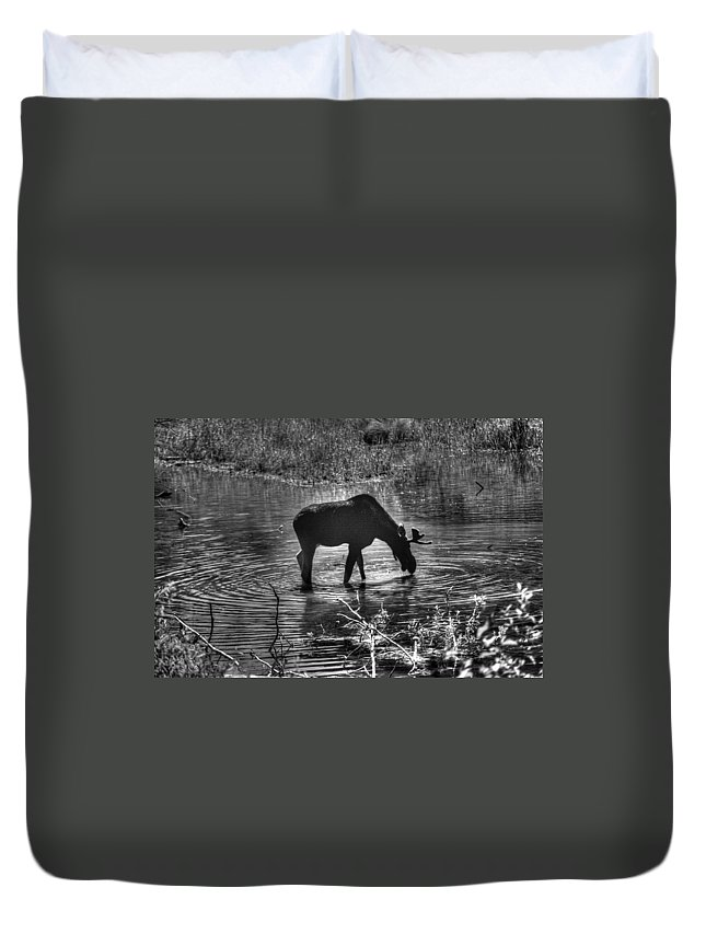 Alces Alces Duvet Cover featuring the photograph Moose Silhouette by One Rude Dawg Orcutt