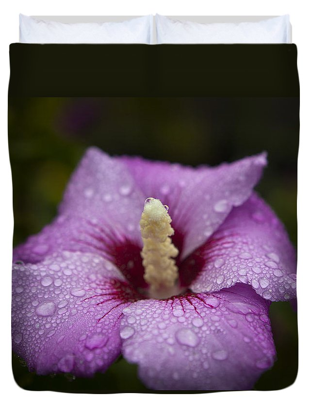 Flower Duvet Cover featuring the photograph Morning Dew On Garden Flower by Jiayin Ma