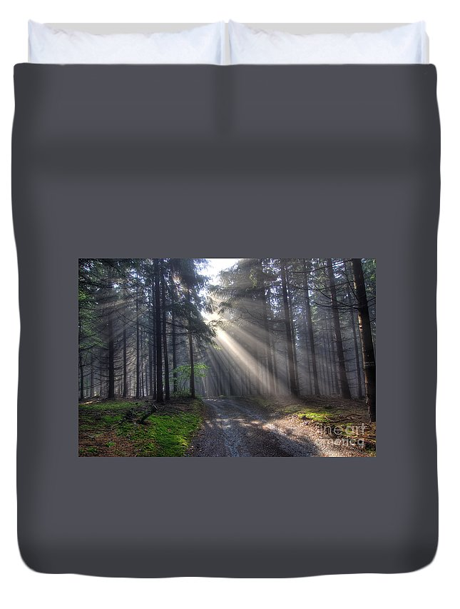 Rays Duvet Cover featuring the photograph Morning Forest In Fog by Michal Boubin