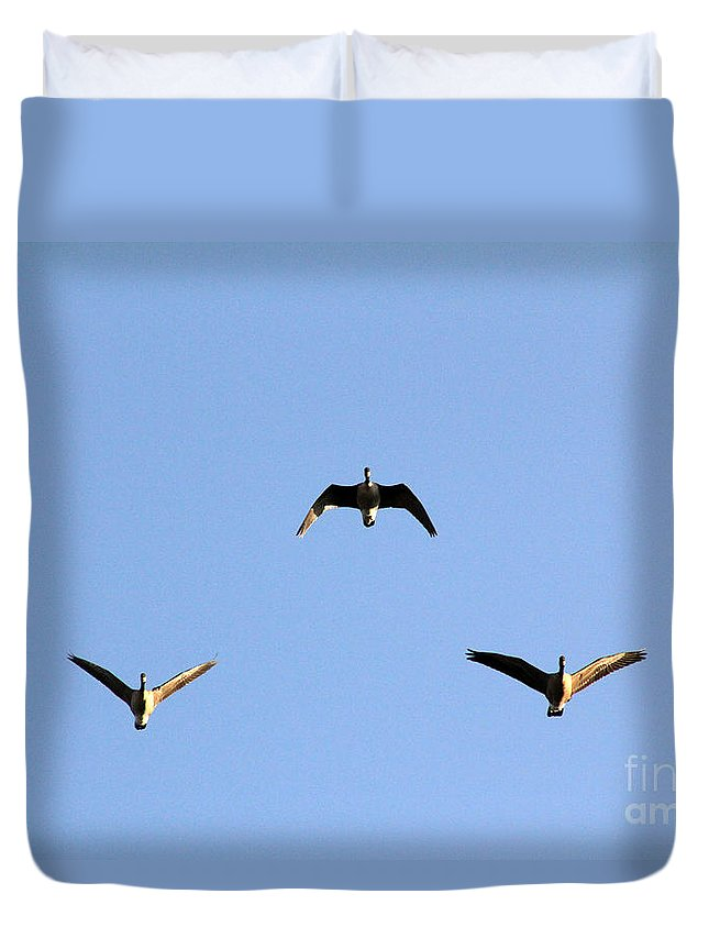 Poster Duvet Cover featuring the photograph Morning Formation by Alycia Christine