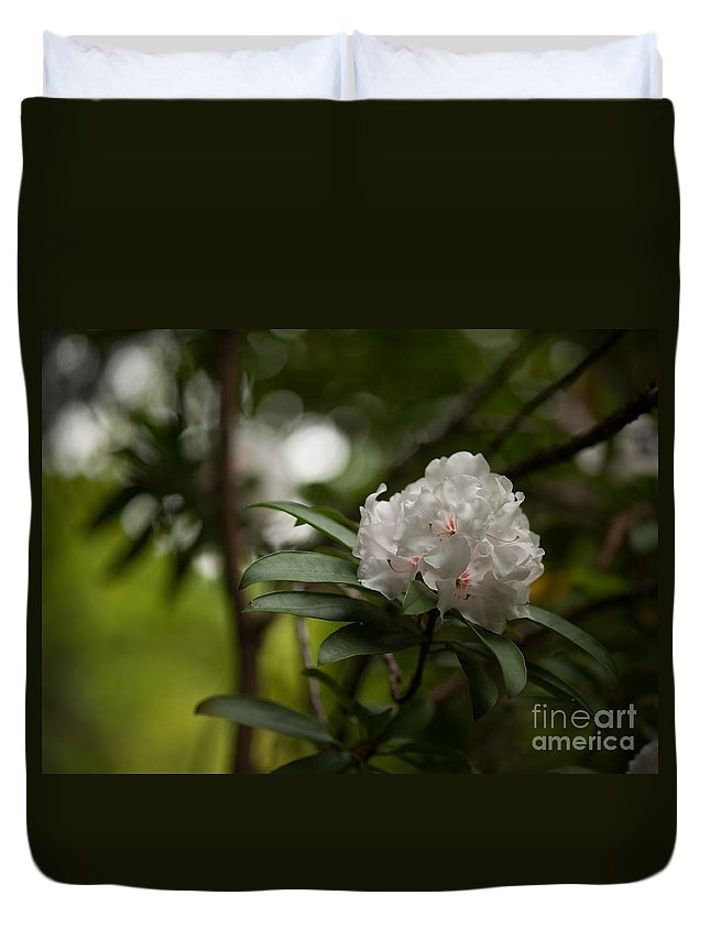 Rhodies Duvet Cover featuring the photograph Morning Grace by Mike Reid