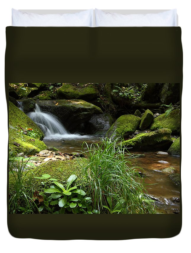 Tennessee Duvet Cover featuring the photograph Moss And Water And Ambience by Andrew McInnes