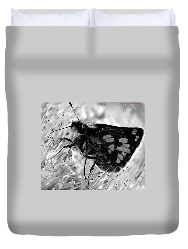 Moth Duvet Cover featuring the photograph Moth One by Chris Berry