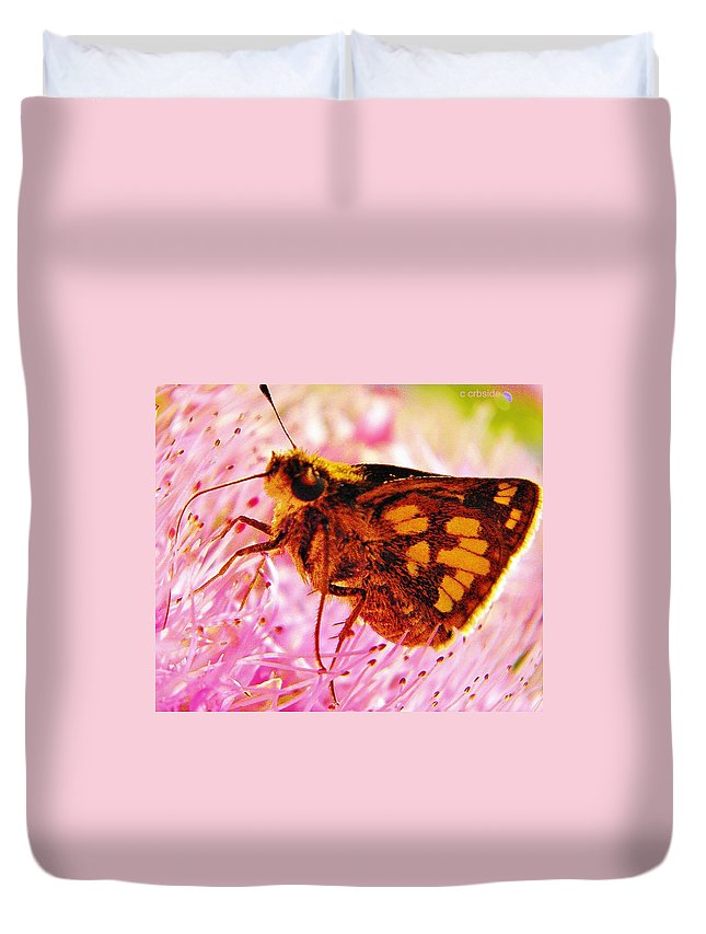 Moth Duvet Cover featuring the photograph Moth Two by Chris Berry