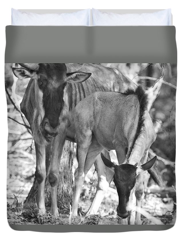Blue Wildebeest Duvet Cover featuring the photograph Mother And Child V4 by Douglas Barnard
