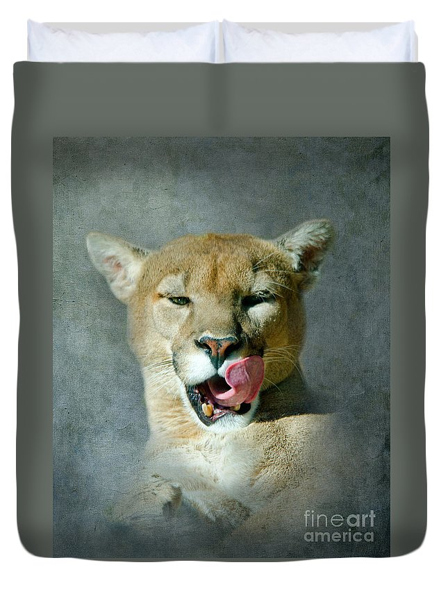 Mountain Lion Duvet Cover featuring the photograph Mountain Lion by Betty LaRue