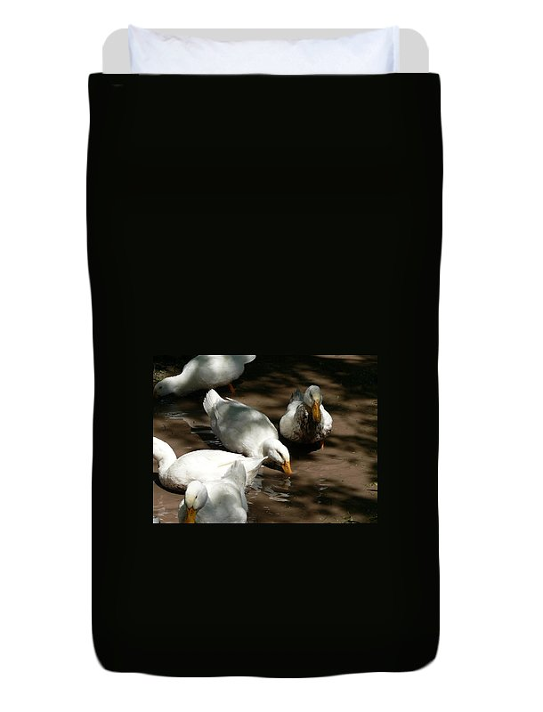 Duck Duvet Cover featuring the photograph Muddy Ducks by Laurel Best