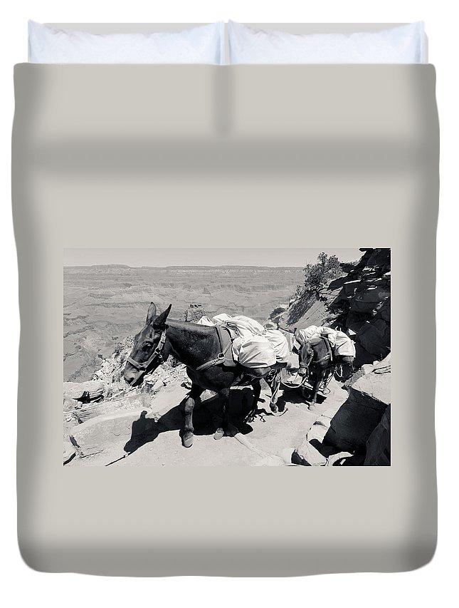 Mule Duvet Cover featuring the photograph Mule Train Bw by Julie Niemela