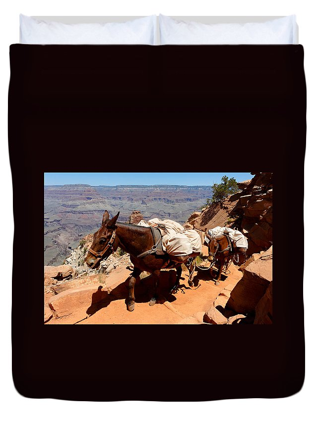 Mule Duvet Cover featuring the photograph Mule Train by Julie Niemela
