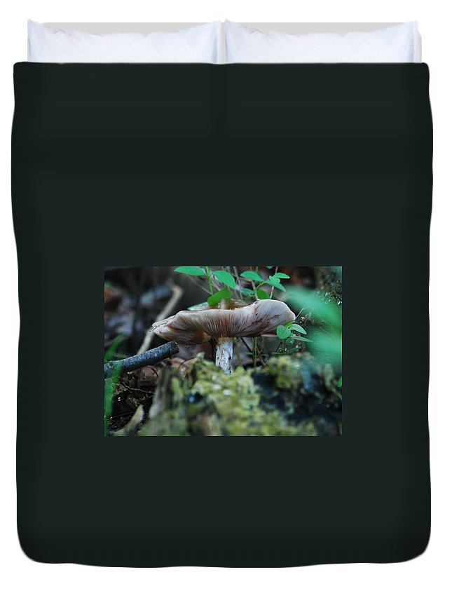 Close Duvet Cover featuring the photograph Mushroom Up Close 7046 1676 by Michael Peychich