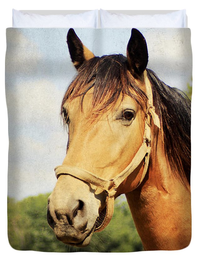 Active Duvet Cover featuring the photograph My Kentucky Buddy by Darren Fisher