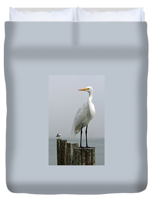 Buddy Duvet Cover featuring the photograph My Little Buddy by Rebecca Samler