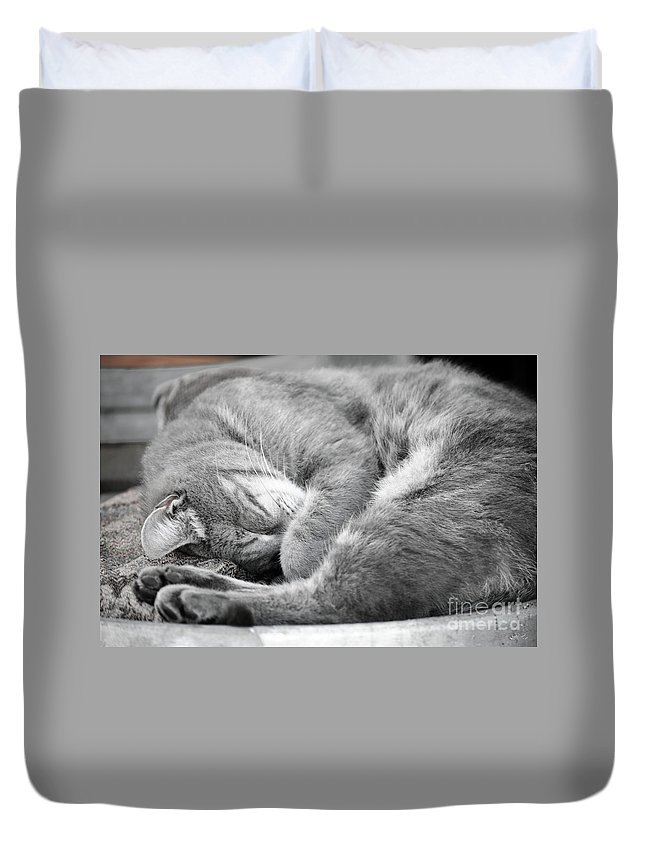 Amadar Duvet Cover featuring the photograph Nap Time by Diego Re