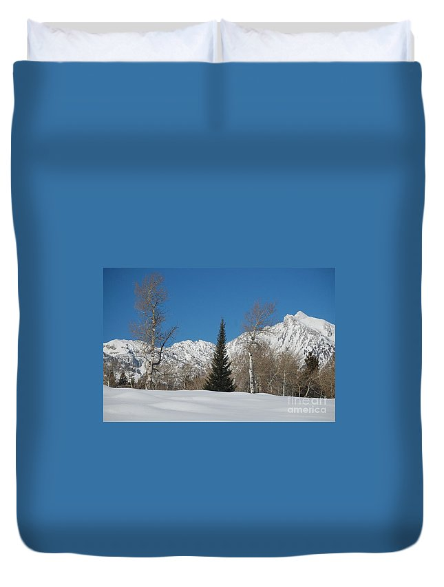Christmas Duvet Cover featuring the photograph Nature's Christmas Tree by Lucy Bounds