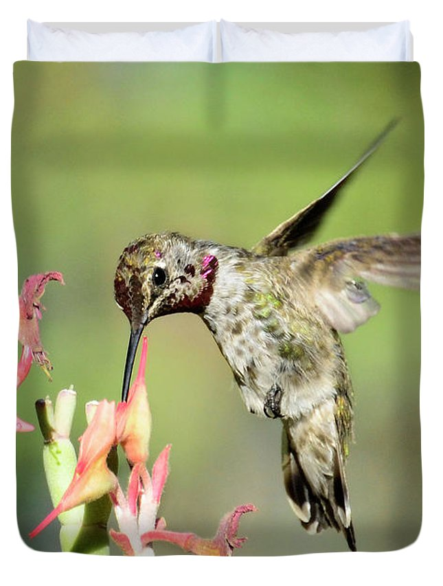 Hummingbird Duvet Cover featuring the photograph Nature's Jewels by Saija Lehtonen