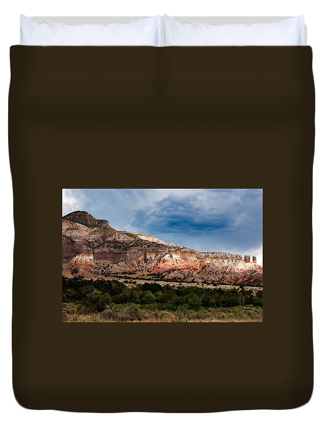 Arizona Duvet Cover featuring the photograph Nature's Paintbrush by Jason Smith