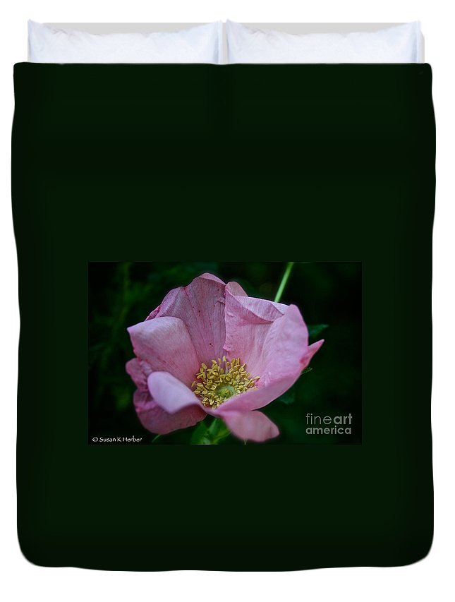Plant Duvet Cover featuring the photograph Nearly Spent Rose by Susan Herber