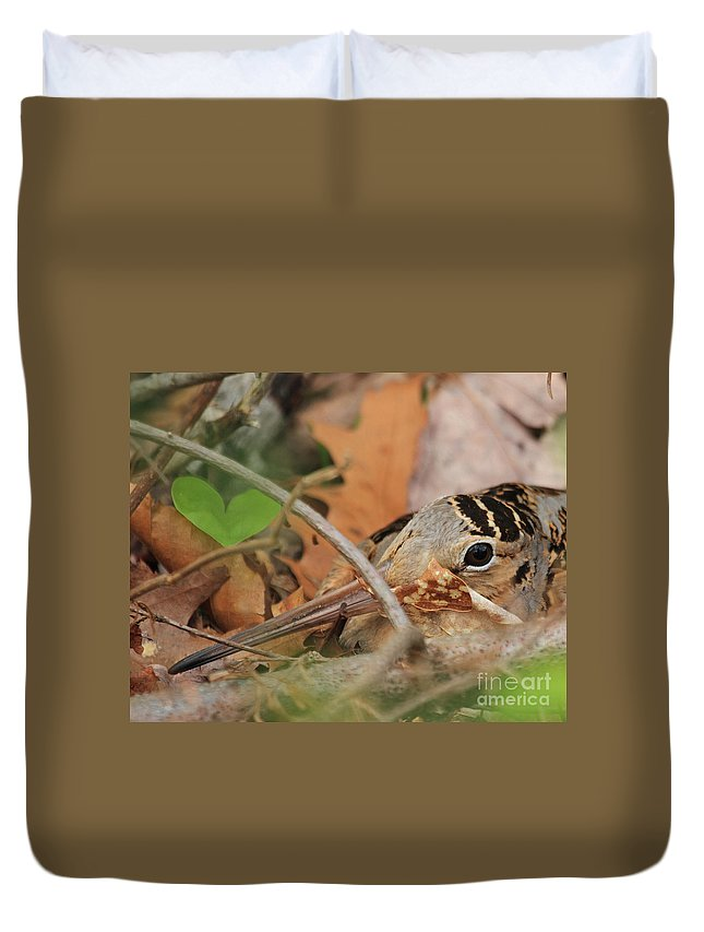 Woodcock Duvet Cover featuring the photograph Nesting Woodcock by Lloyd Alexander