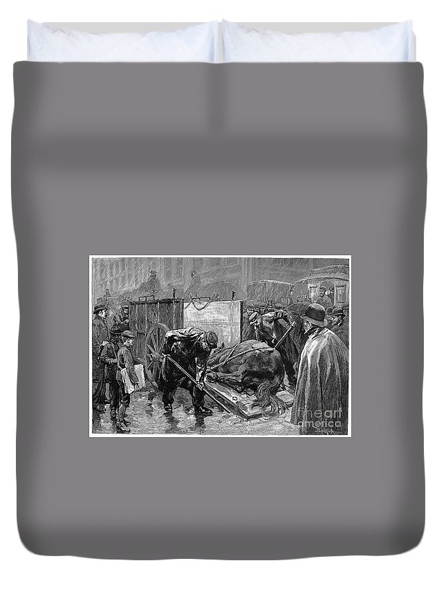 1888 Duvet Cover featuring the photograph New York: Aspca, 1888 by Granger