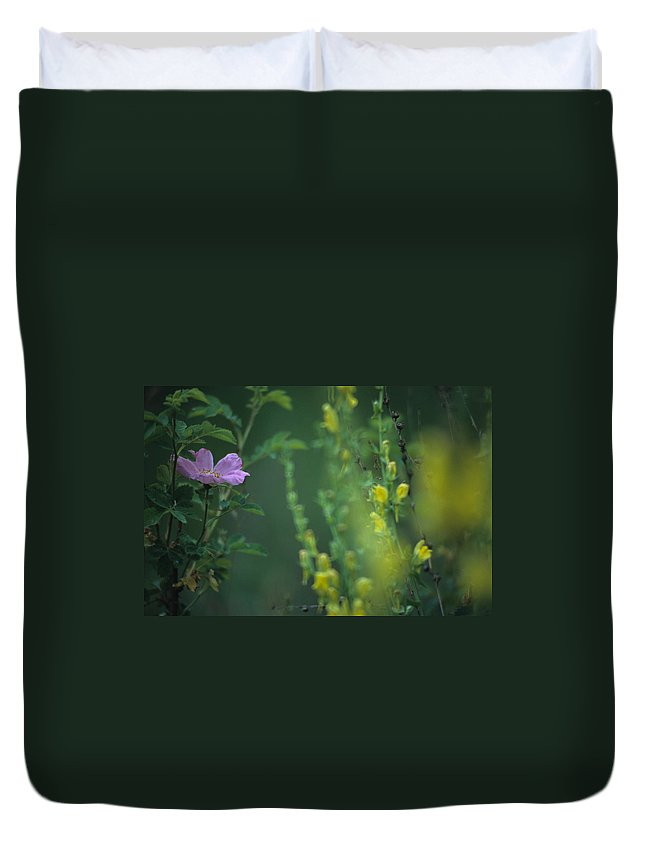 Nootka Rose Duvet Cover featuring the photograph Nootka Rose And Yellow Toadflax by One Rude Dawg Orcutt