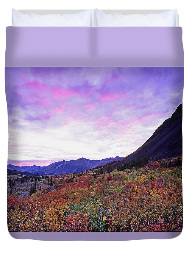 Light Duvet Cover featuring the photograph North Canol Road Near Macmillian Pass by Robert Postma