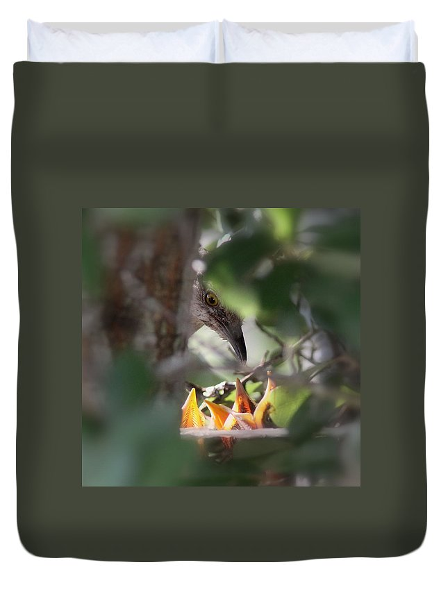 Bird Duvet Cover featuring the photograph Northern Mockingbird - With Babies by Travis Truelove