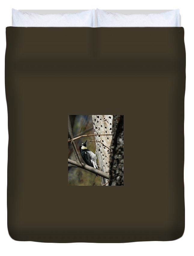 Now Where Did I Put It Duvet Cover featuring the photograph Now Where Did I Put It by Ernie Echols
