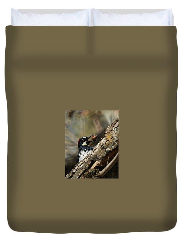 Now Where Do I Put This One Duvet Cover featuring the photograph Now Where Do I Put This One by Ernie Echols
