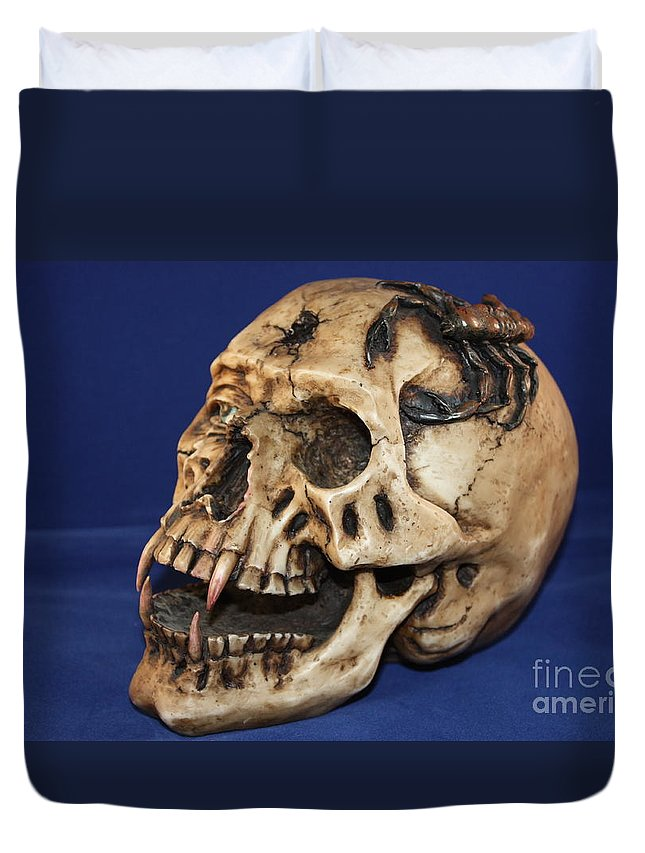 Skull Duvet Cover featuring the photograph Old Bone's Skull On Blue Cloth by Robert D Brozek