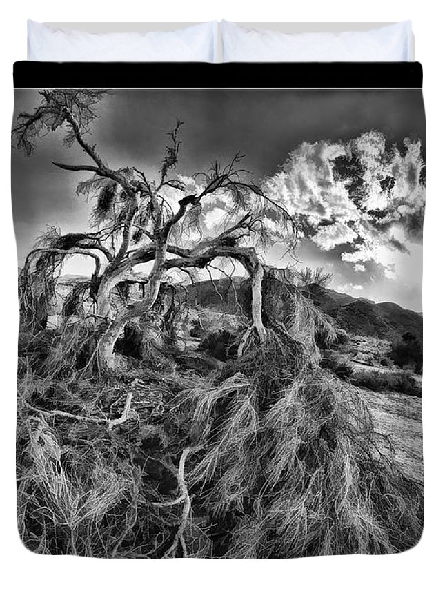 Fine Art Photographers Duvet Cover featuring the photograph Old Desert Tree by Blake Richards
