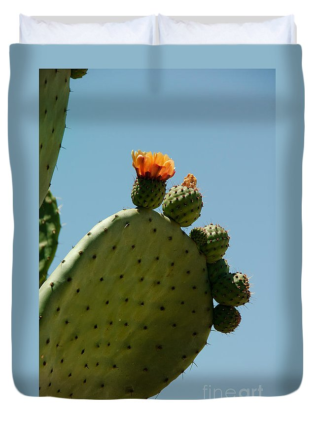 Cactus Duvet Cover featuring the digital art Old Town San Diego by Carol Ailles