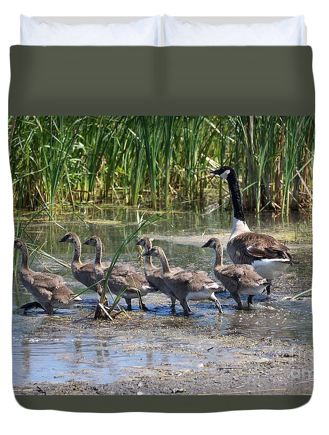 Goose Duvet Cover featuring the photograph On The Move by Lori Tordsen
