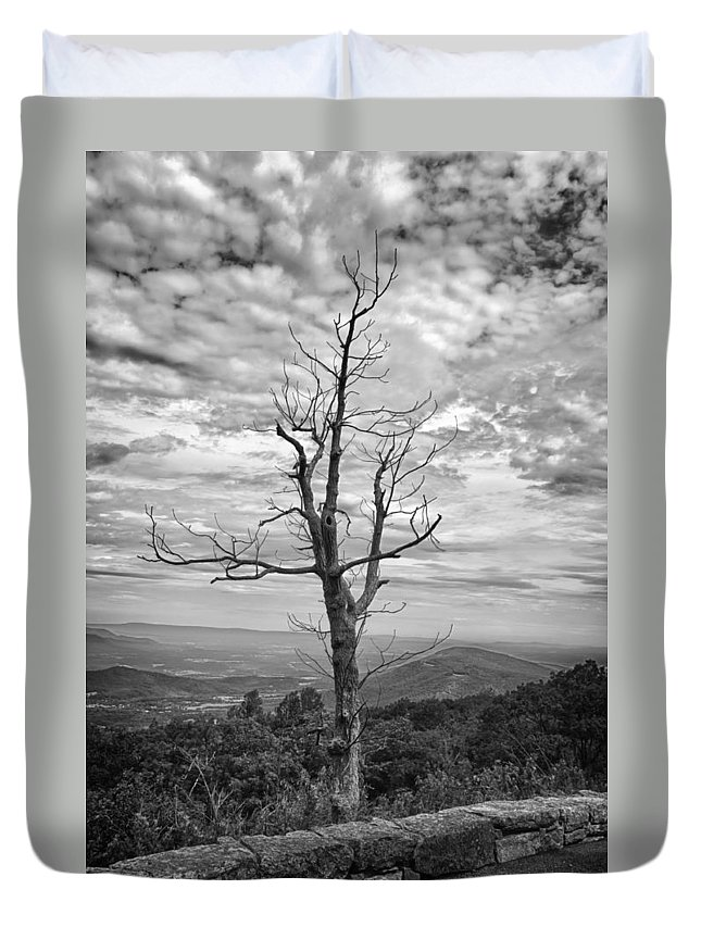 Forest Duvet Cover featuring the photograph On Top Of The World by Guy Whiteley
