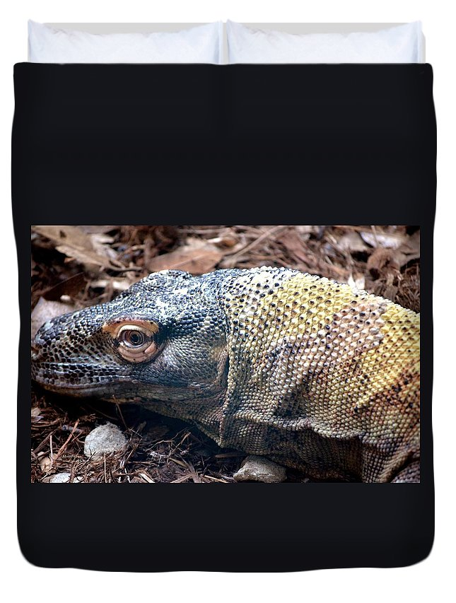 One Duvet Cover featuring the photograph One Eyed Monster by Maria Urso