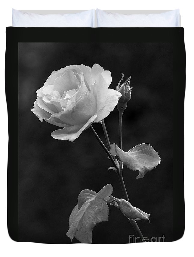 Rose Duvet Cover featuring the photograph One Rose In Black And White by Carol Groenen