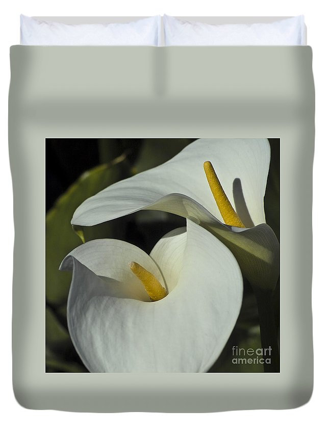 Calla Duvet Cover featuring the photograph Open White Calla Lily by Heiko Koehrer-Wagner