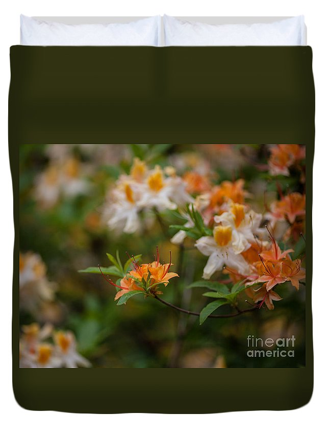 Rhodies Duvet Cover featuring the photograph Orange Brilliance by Mike Reid