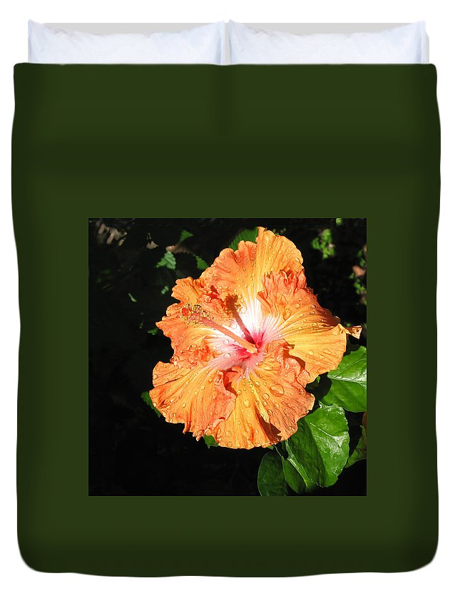 Raindrops Duvet Cover featuring the photograph Orange Hibiscus After The Rain 1 by Connie Fox
