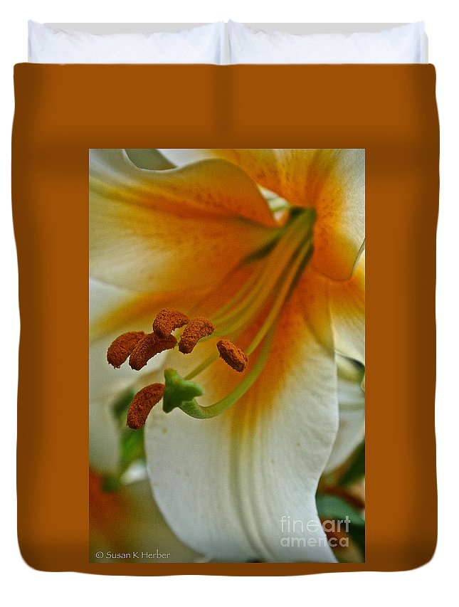Outdoors Duvet Cover featuring the photograph Orange Interior by Susan Herber