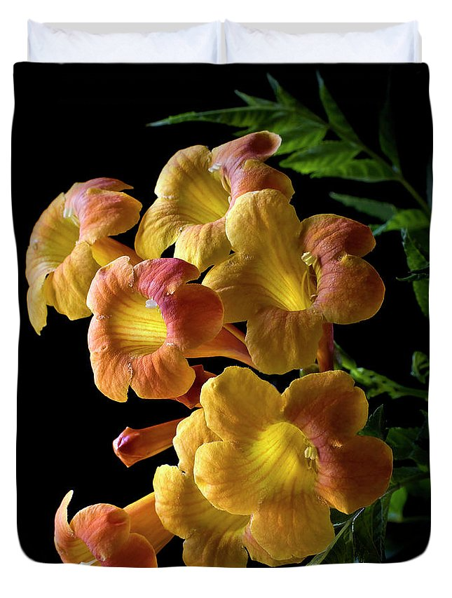 Flower Duvet Cover featuring the photograph Orange Jubilee by Endre Balogh
