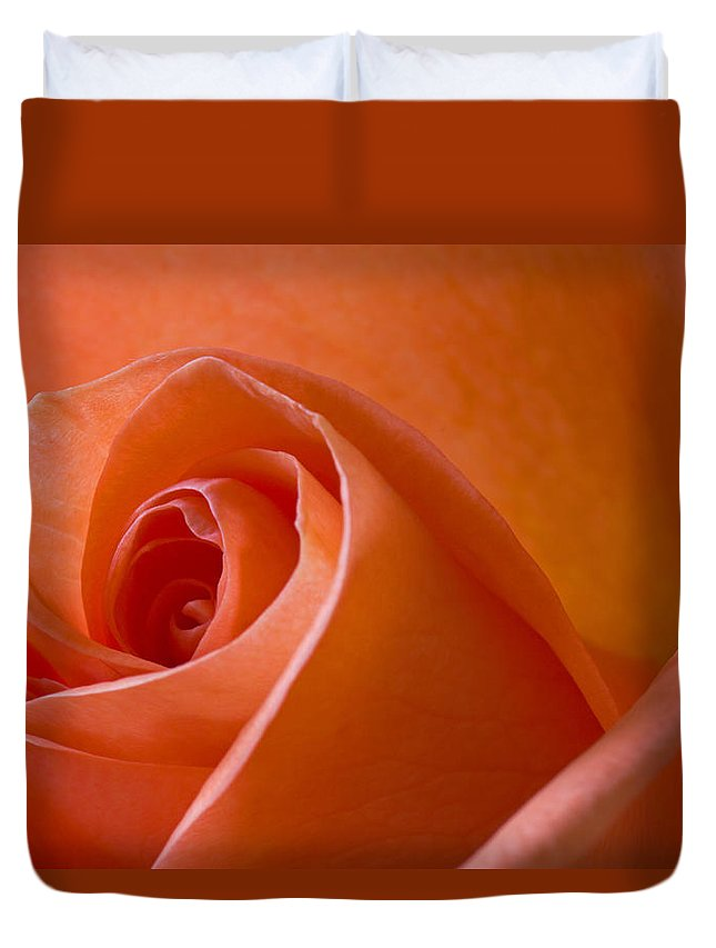 Rose Duvet Cover featuring the photograph Orange Rose by David Pringle