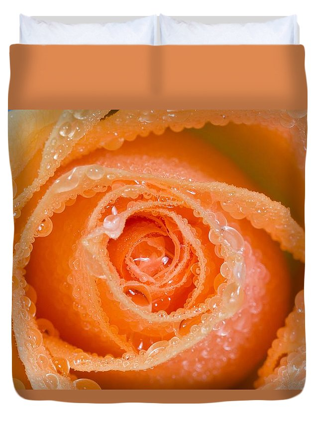 Close-up Duvet Cover featuring the photograph Orange Rose With Dew by Craig Tuttle