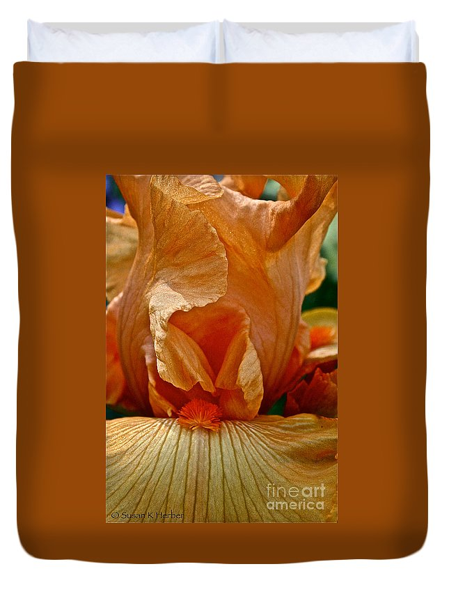 Plant Duvet Cover featuring the photograph Orange Sherbert by Susan Herber