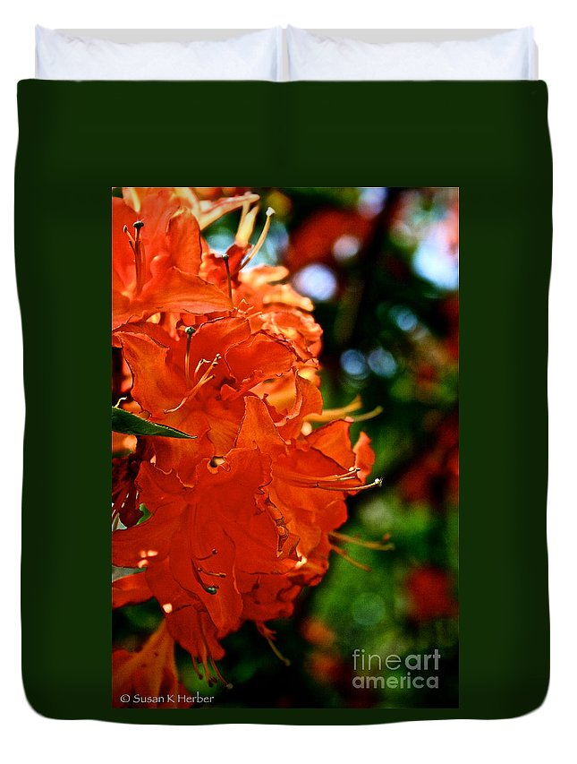 Plant Duvet Cover featuring the photograph Orange by Susan Herber